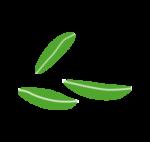 Міцелій зерновий
